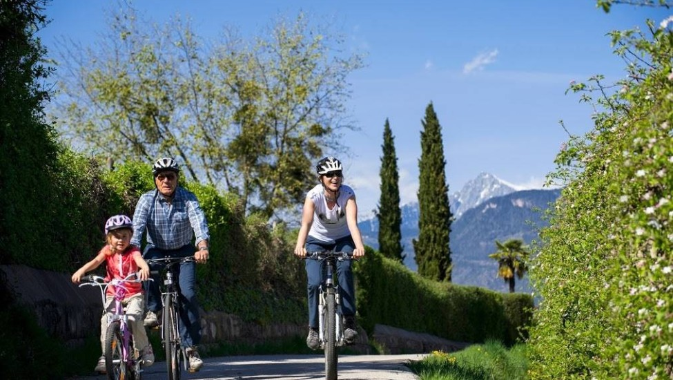Our top 3 family cycling holidays